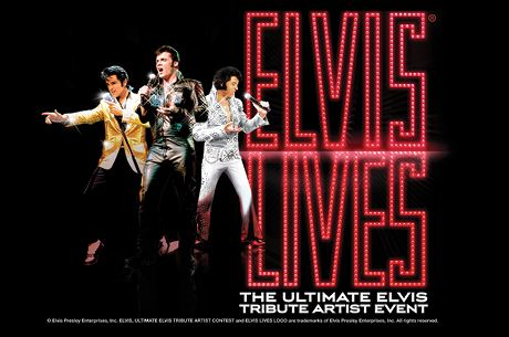 Website Slide Elvis